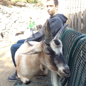 St. Louis, MO (November 2012): Thanksgiving in St. Louis, where goats sit on benches. (Just kidding, we were at the St. Louis Zoo!)