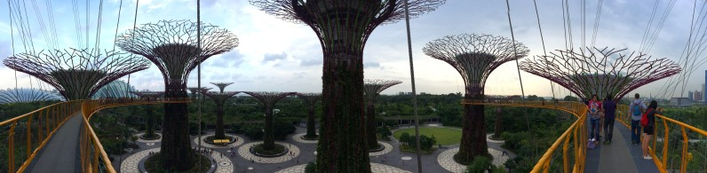 Dec 27, 2013: Supertrees Park, Singapore