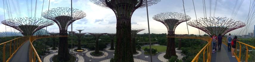 Dec 27, 2013: Supertrees Park, Singapore